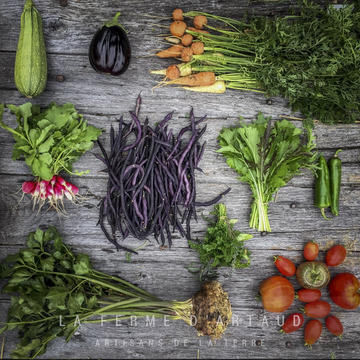 legumes_montrelais